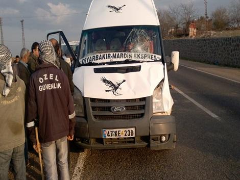 Çınar'da minibüs ineğe çarptı