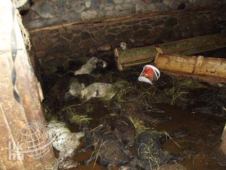 Karlıovada Sel Felaketi 2