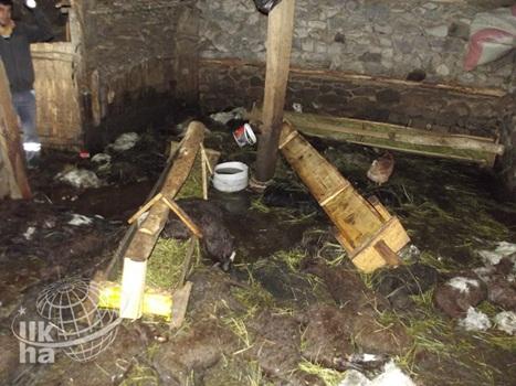 Karlıovada Sel Felaketi 3