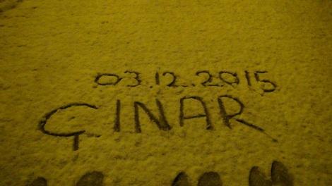 Çınar yoğun kar yağışı altında