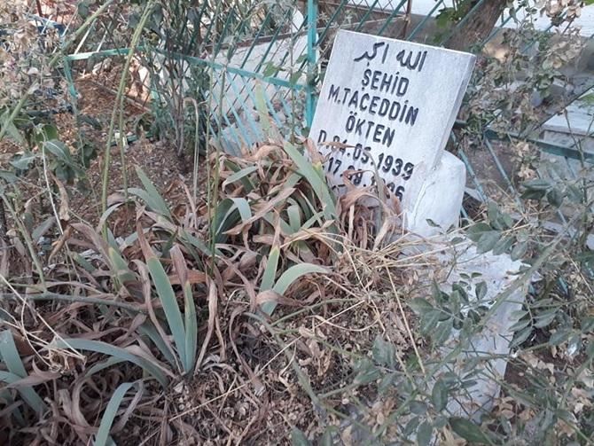 Çınar'da Kurban Bayramı coşkusu 2019 1