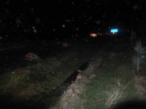Çınar'da Otomobil, Koyun Sürüsüne Daldı 5