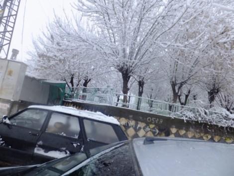 Çınar'dan Kar Manzaraları 10
