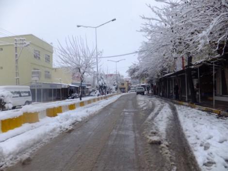 Çınar'dan Kar Manzaraları 11