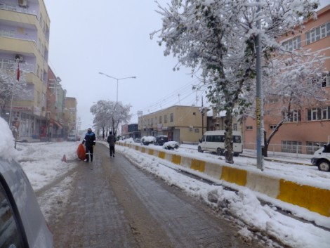 Çınar'dan Kar Manzaraları 13