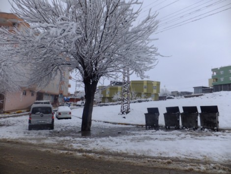 Çınar'dan Kar Manzaraları 16