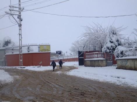 Çınar'dan Kar Manzaraları 18