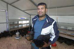 Adana'da kırsal kalkınma kapsamında 80 tavuk çiftliği kuruldu