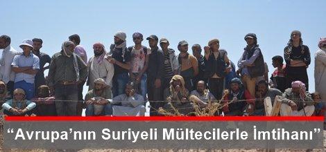 """""""Avrupa'nın Suriyeli Mültecilerle İmtihanı"""""""