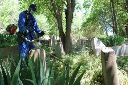 Belediyenin yapmadığı temizliği halk yapıyor video foto