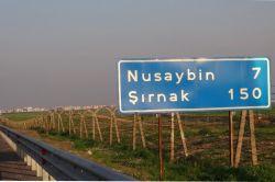 Nusaybin'de 354 PKK'li öldürüldü