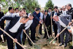 Cizre'de hastane bahçesine fidan dikildi