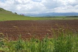 Ova köylerinde susuzluk nedeniyle araziler atıl durumda