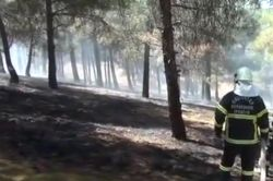 Gaziantep Dülük Baba Tabiat Parkı'nda yangın