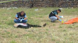 Siverek'in Yenişehir Mahallesi'nde erkek cesedi bulundu foto