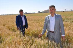 """""""Çiftçilere anızı toprağa karıştırma desteği verilmeli"""""""