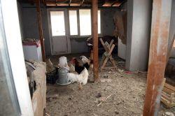 Bursa Osmangazide apartman dairesini tavuk kümesine dönüştürdüler foto