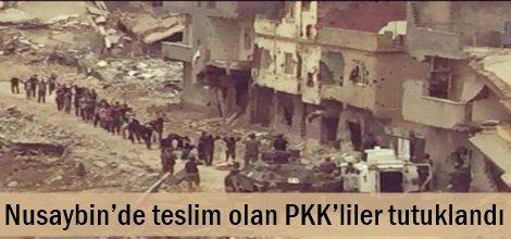 Nusaybin'de teslim olan PKK'liler tutuklandı