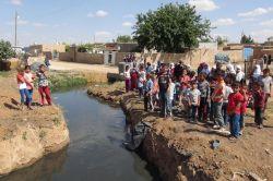 Köy deresinden geçen atık su hastalık saçıyor