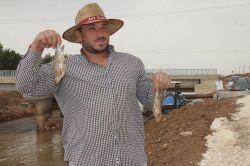 Tahliye kanalında balık tutarak geçiniyorlar video foto