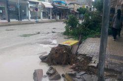 Adıyaman Kâhta'da şiddetli yağış ve rüzgâr hayatı olumsuz etkiledi video foto
