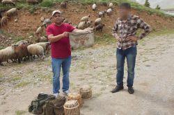 Tarsus'ta kaçak keklik avlayanlar suçüstü yakalandı foto