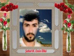 ŞEHİD M. EMİN ÜLKÜ