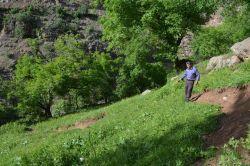 Sason'un Örenagıl köyündeki toprak kayması köylüleri endişelendiriyor