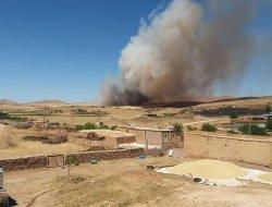 Çınar'da yüzlerce dönüm ekin küle döndü-foto