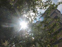 Meteorolojiden sıcalık uyarısı