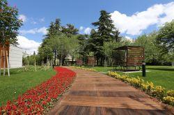 Gaziantep'in fıstık parkı hizmete girdi foto