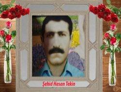 Şehid Hasan Tekin (18 Haziran 1990)