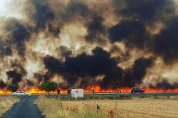 Buğday ekili 200 hektarlık tarla küle döndü