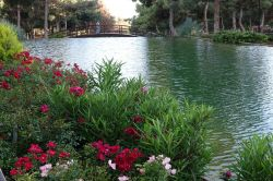 Gaziantepliler iftar saatinde parkları tercih ediyor