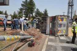 Buğday yüklü kamyonet devrildi: 2 yaralı