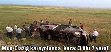 Muş-Elazığ karayolunda  kaza: 3 ölü 7 yaralı