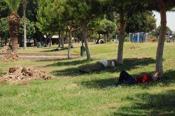 Mersinliler ağaçların gölgesinde serinlenmeye çalıştı foto