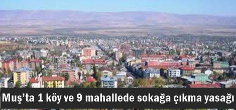 Muş'ta 1 köy ve 9 mahallede sokağa çıkma yasağı