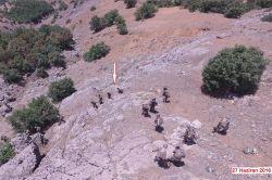 Lice'de 6 PKK'li yakalandı