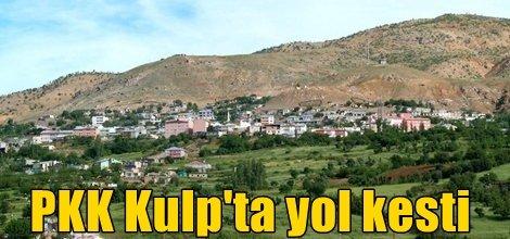 PKK, Kulp Narlıca köyü istikametinde yol kesti