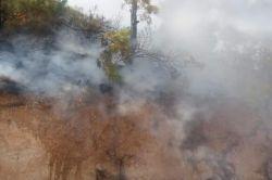 Silifke'de orman yangını büyümeden söndürüldü