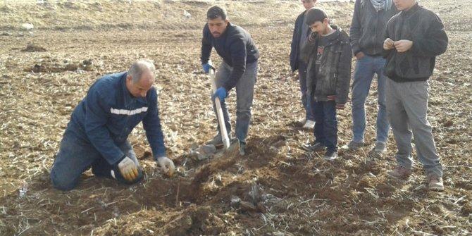 Çiftçiler fıstık ekimine başladı