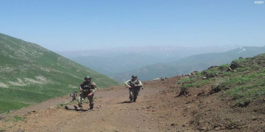 Tendürek'te öldürülen PKK'li bölge sorumlusu çıktı