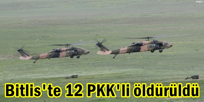 Bitlis'te 12 PKK'li öldürüldü