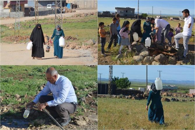 Suları kesilen köylüler Dicle EDAŞ'a tepkili