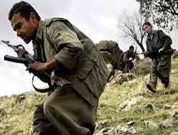 PKK, Dicle'de Özel Harekatçılara Ateş Açtı