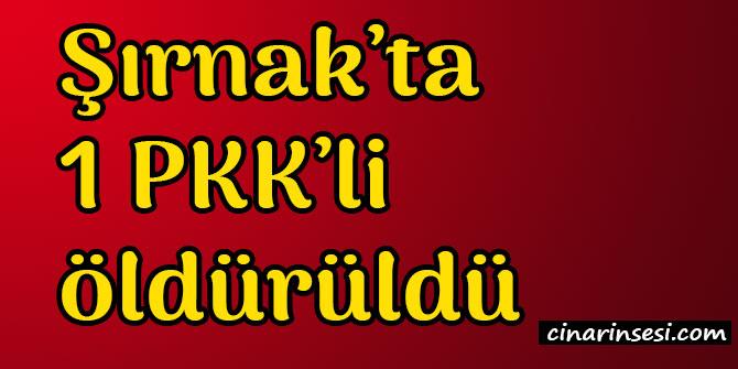 Şırnak Uludere'de 1 PKK'li öldürüldü