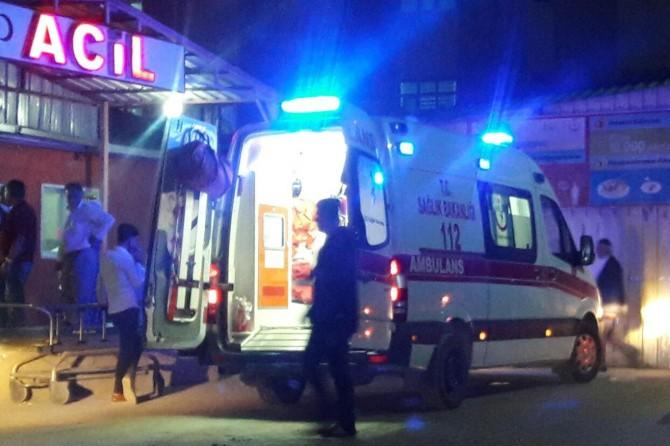 Erciş'te çıkan kavgada 2 kişi yaralandı