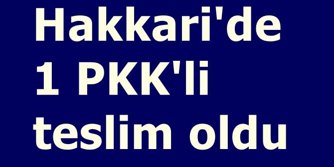 Hakkari'de 1 PKK'li teslim oldu