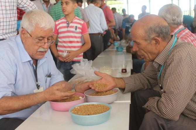 Çiftçilerden TMO'ya buğday fiyatı tepkisi